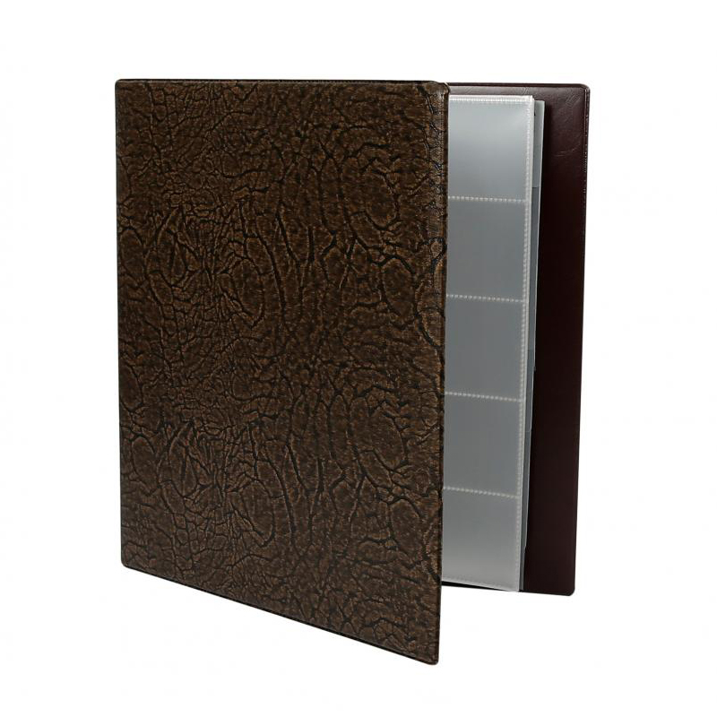 Foldex Business Card Holder with Ring Binder - 400 cards
