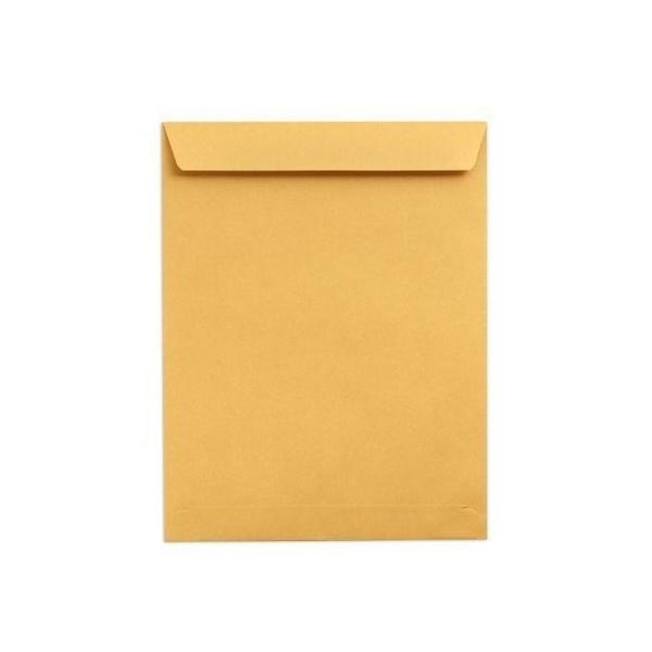 Hispapel 9in x 4in Envelope - Brown (pkt/100pcs)