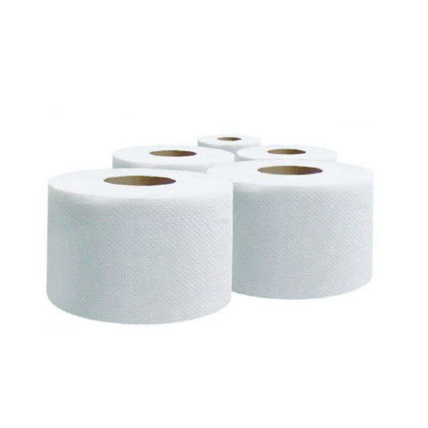 Queenex 2-ply 200 sheets Toilet Roll - 10cm x 11cm (box/100pcs)