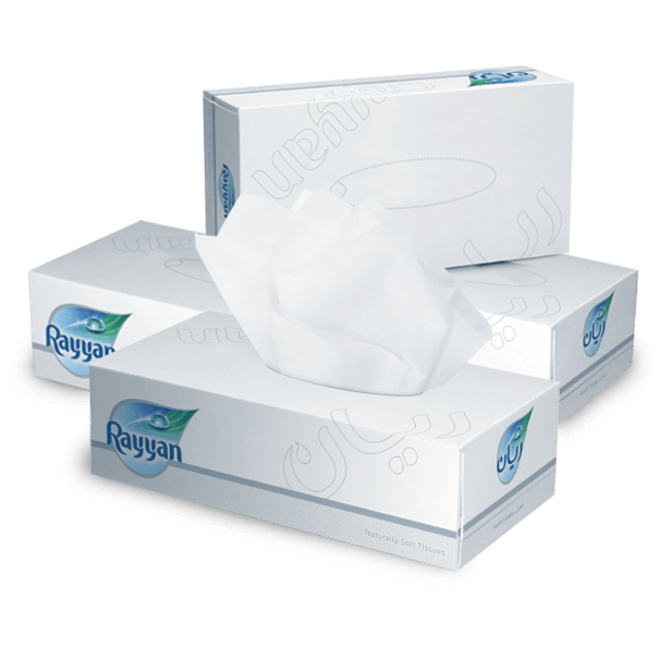 Rayyan 2-ply Facial Tissue 150-sheets (ctn/30b)