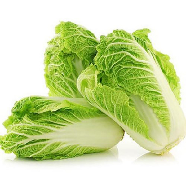 Chinese Cabbage, Holland - Per Kg