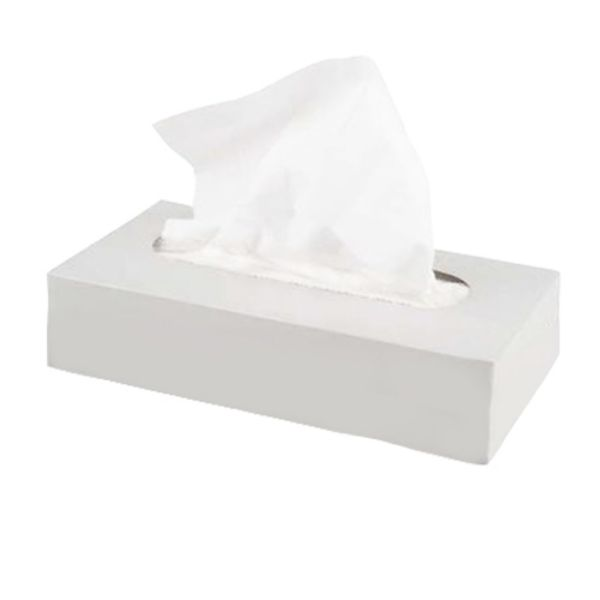 Facial Tissue Solutions Corporate 150 x 2 ply (box/30pcs)